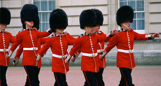 stella mccartney to design humane hats for the queen s guards
