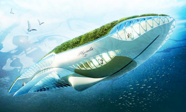 Floating Whale Garden