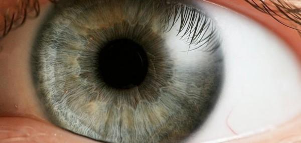 retinal definition