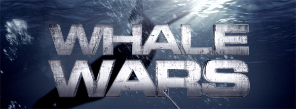 whale wars, animal planet, season three, whales, sea shepherd