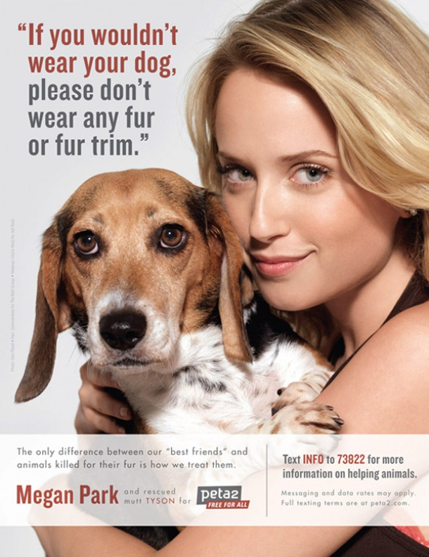 Peta Uk List Of Cruelty Free Dog Food