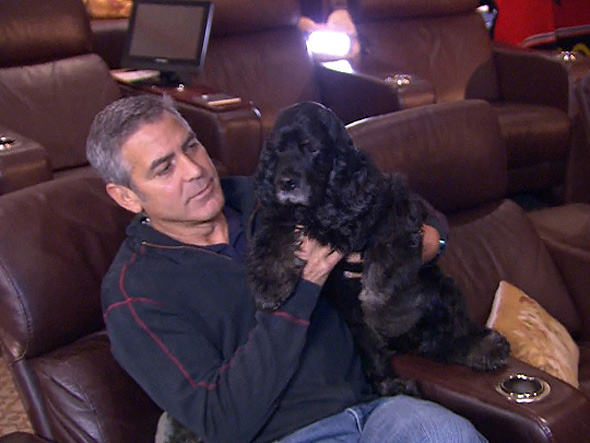 George Clooney and his shelter dog Einstein
