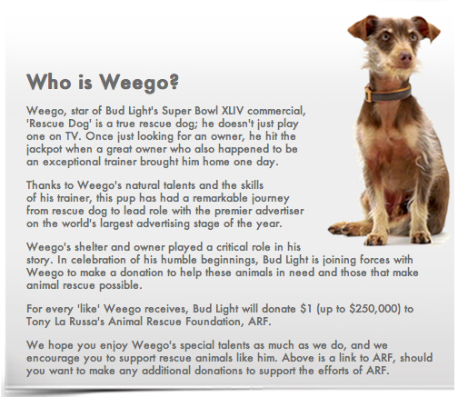 Weego super bowl ad plugs rescue dogs charity ecorazzi here we go bud light commercial super bowl xlvi mozeypictures Choice Image