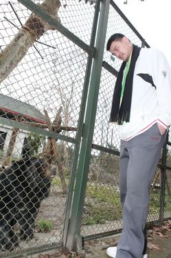 yao ming meets with bears that were used for bile at animals asia