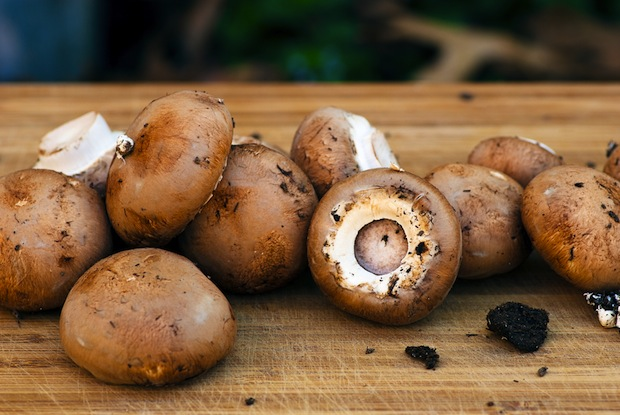 Mushrooms can fight cancer and aid weight loss.
