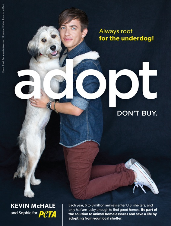 kevin mchale adopt an animal