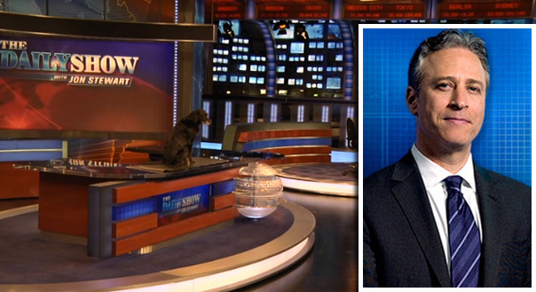 Jon Stewart owns two rescued pit bulls, Monkey and Shanksy.