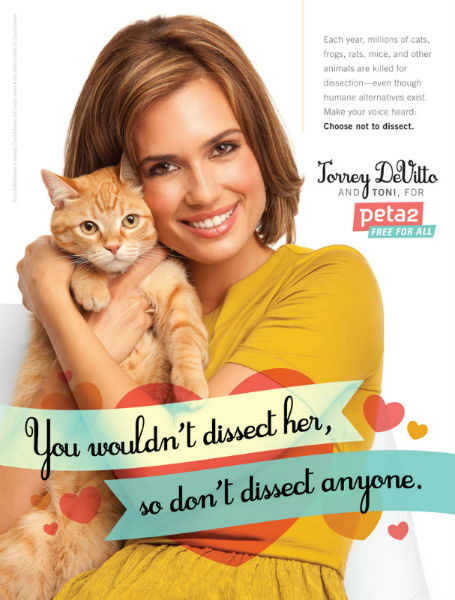 Torrey DeVitto and PETA say no to dissecting animals in classrooms