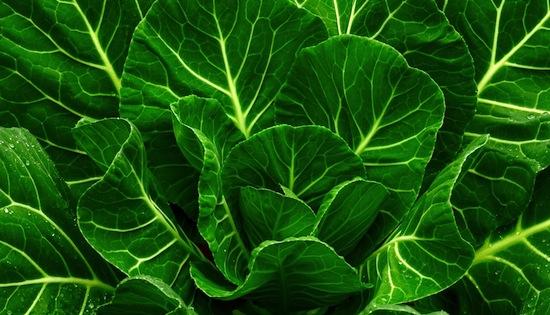 collard greens calcium