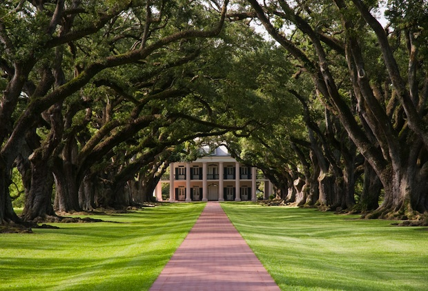 The magnificent oaks that create a tunnel to Oak Alley Plantation are part of a National Historic Landmark.