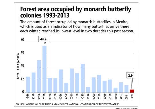 monarch-graph