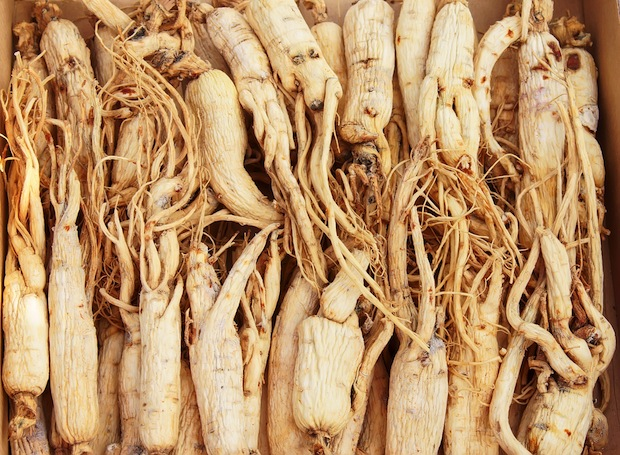 Ginseng is one of the most popular herbal medicines in the world and is used to treat whole body health.